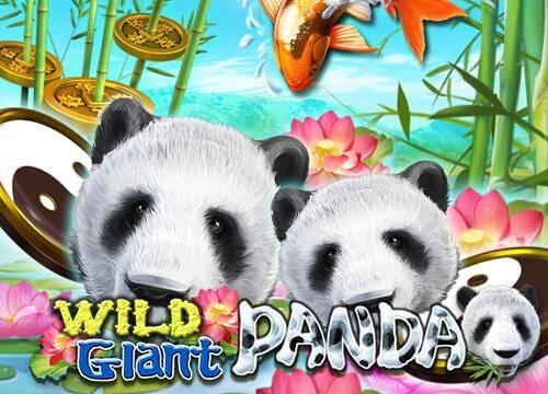 ทางเข้าจีคลับ เล่นสล็อต wild giant panda เกมแจกโบนัสหลายต่อ